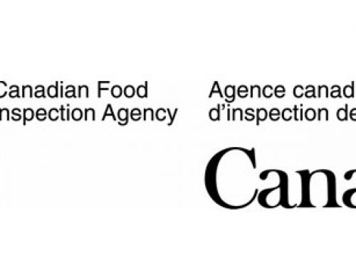 What Is the CFIA's Role?