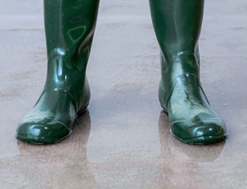 Foam, granules, or liquids: What is the best way to sanitize your boots?