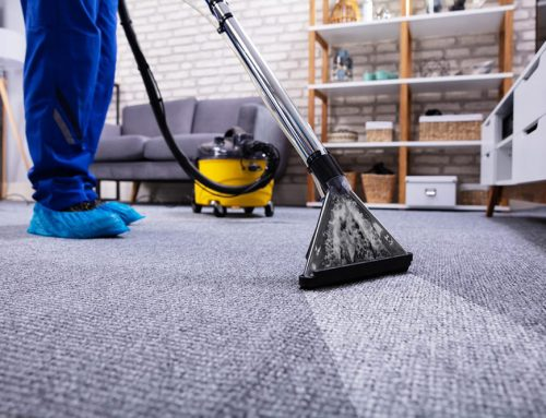 Time to clean your carpets? Let us help you decide how!
